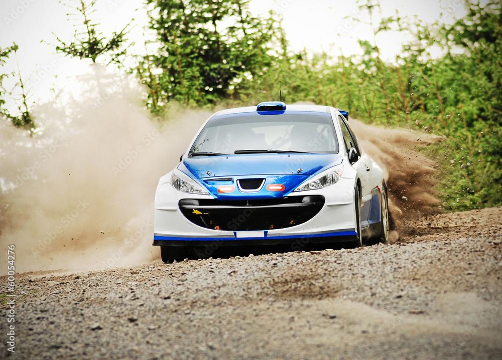 Auto rajd w akcji - Peugeot 206 С2000