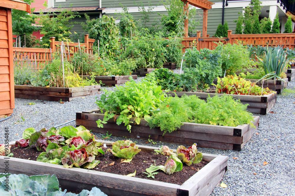 Owocowy i ogród warzywny