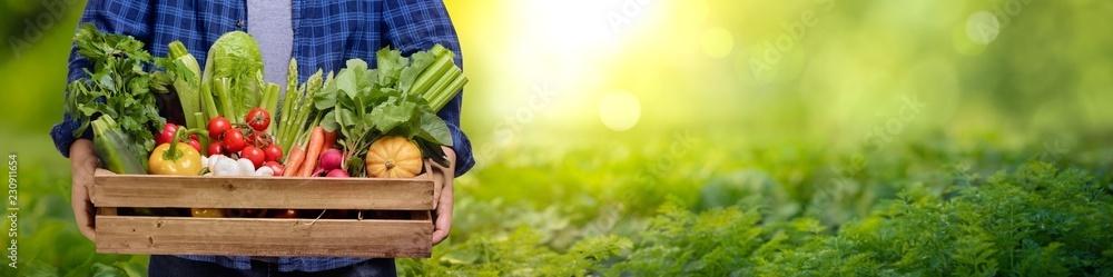 Ręce trzymają w drewnianym pudełku z warzywami