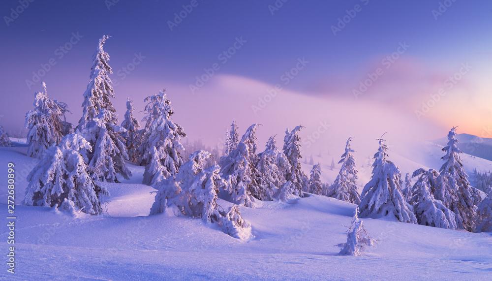 Zima w Karpatach