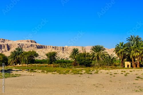 Brzegu Nilu w Luksorze, Egipt