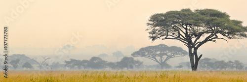Piękne miejsca parku Narodowego Serengeti