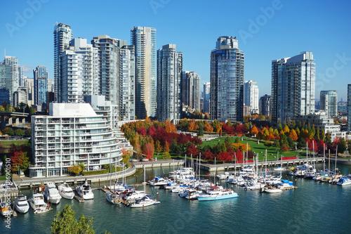 Jesień krajobraz fałszywe krzyk w sercu miasta Vancouver, Kolumbia brytyjska, Kanada