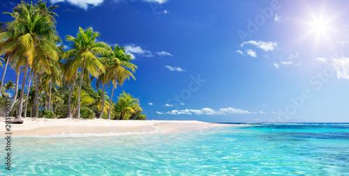 Palm Beach W Tropikalny Raj - Wyspa Gwadelupa Na Karaibach