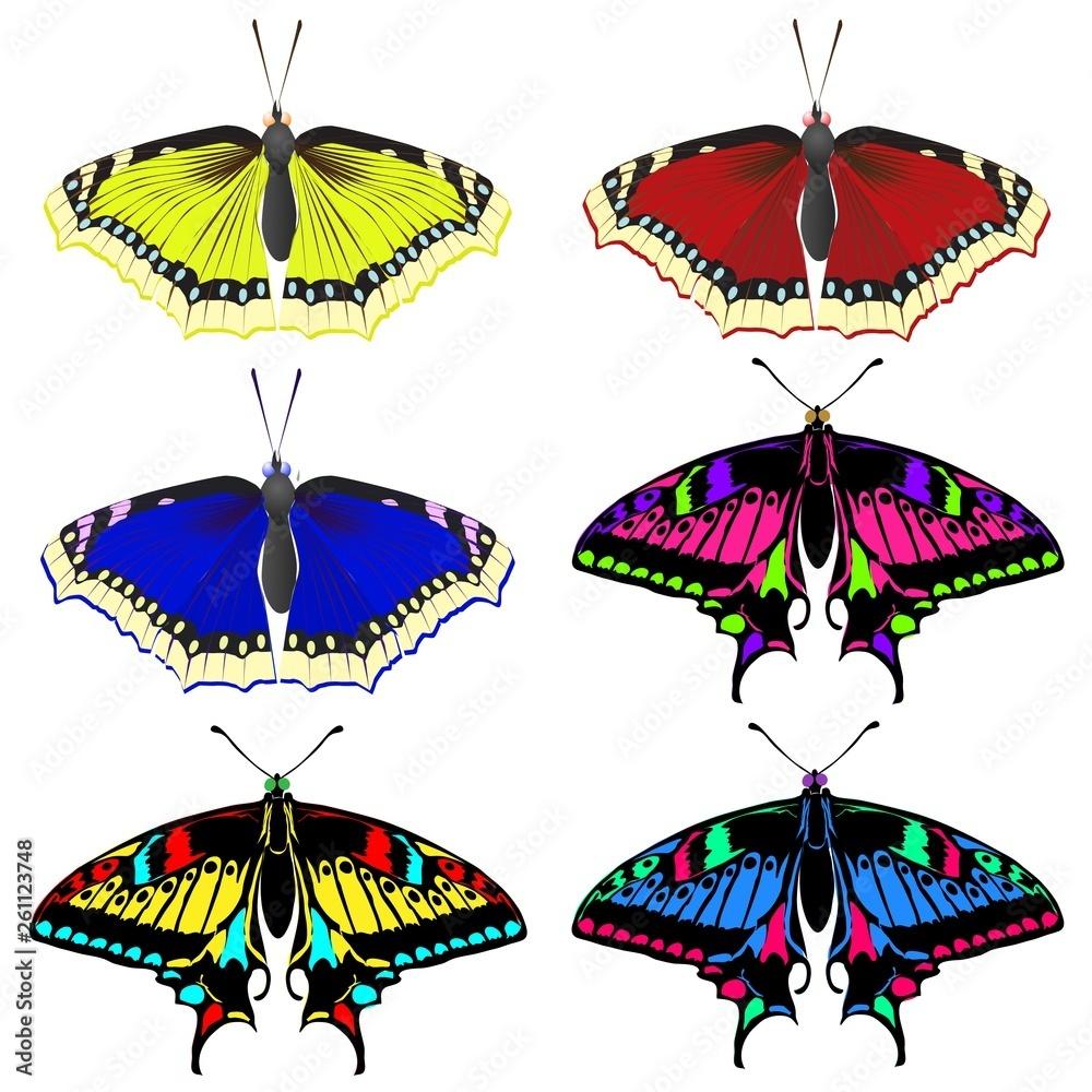 Wybór kolorowych pięknych motyli. Pięknych owadów latających.