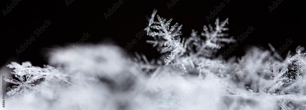 Płatek śniegu, mała Śnieżynka na śniegu