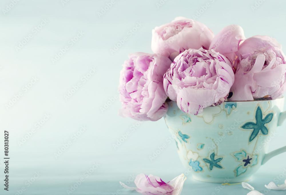 Różowa piwonia kwiaty