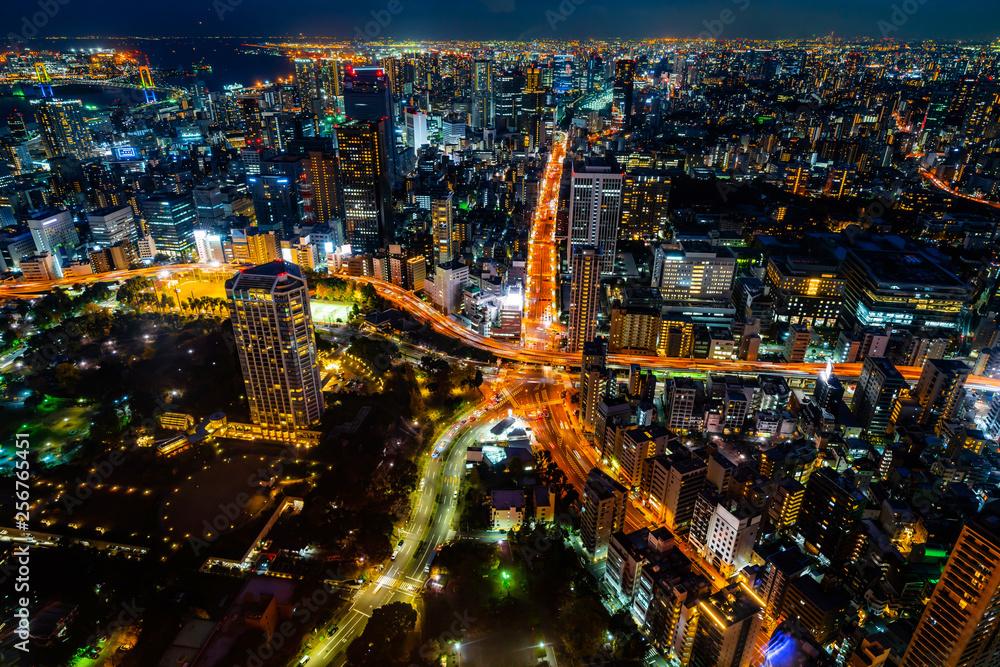 krajobraz miejski powietrzna wgląd nocy Tokio, Japonia
